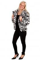 Bontjas zebra